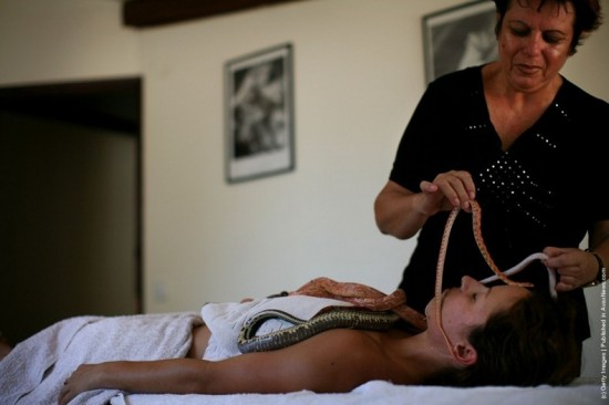 Snake Massage Spa