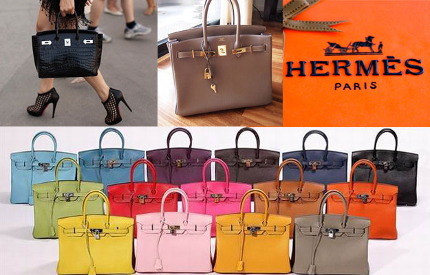 Hermes Expensive Purse Brand
